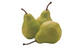 pear_longg